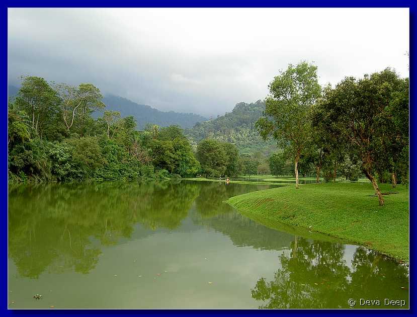Ip43 Taiping Lake Gardens Jpg